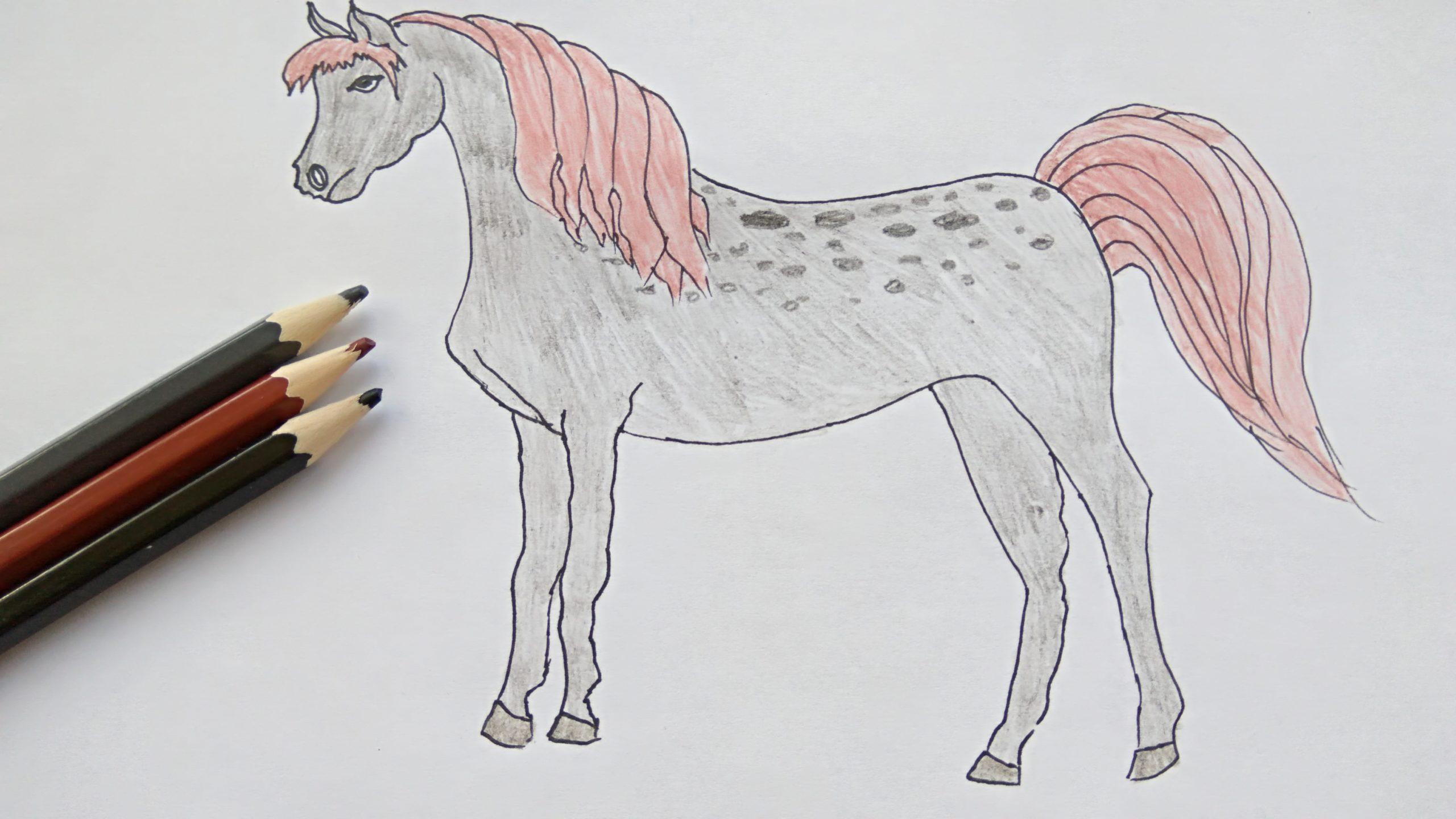 нарисовать лошадь карандашом